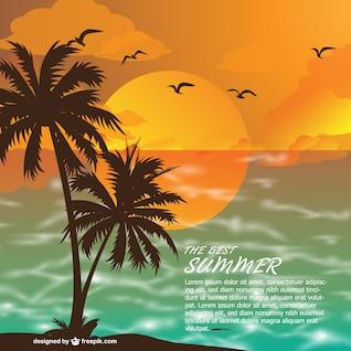 Verão praia ao pôr do sol do vetor