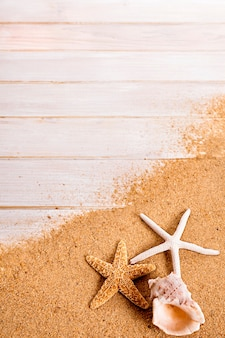Verão, praia, fundo, starfish