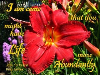 vida abundante
