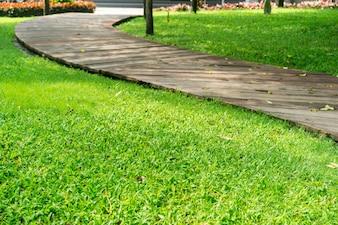 Winding caminho com grama nas laterais