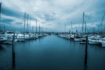 Yachts em Half Moon Bay, Auckland, Nova Zelândia