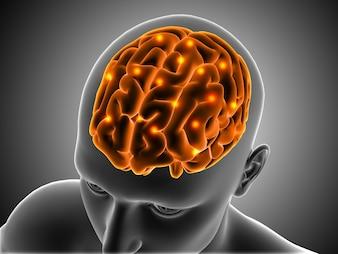 3D medizinischen Hintergrund mit männlichen Figur mit Gehirn hervorgehoben