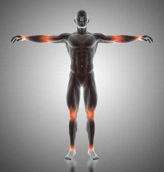 3D übertragen von einer männlichen Figur mit Gelenken hervorgehoben