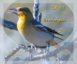 Stärke und mein Lobgesang