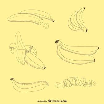 Bananen Vektor frei