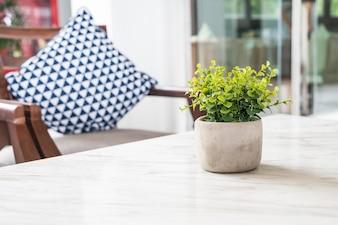 Baum in Topf Dekoration auf dem Tisch im Wohnzimmer