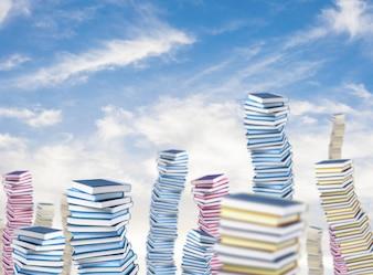 Berg Bücher