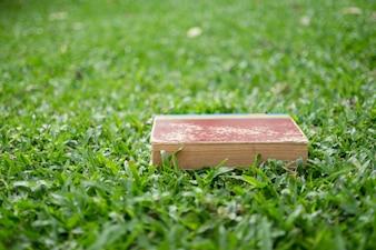 Bildungskonzept - Bücher auf Gras liegen
