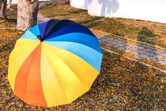 Bunte Regenschirm auf Garten Hintergrund