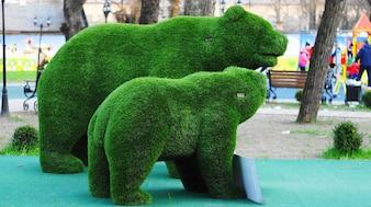 Die Bären. Kunstrasen.
