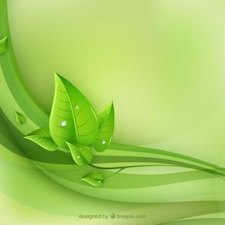 eco Blätter und grüne Wellenvektor
