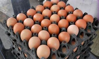 Eier in gestapelten schwarzen Plastikschalen