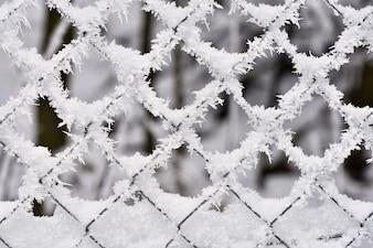 Eisiger Zaun Schöne Winter saisonale abstrakten Hintergrund.