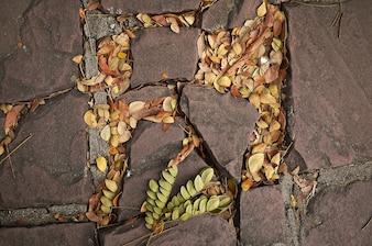 Farbe abstrakte weicher Fokus Wald Rahmen