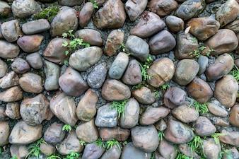 Farbe grün abstrakt Zement Tapeten Bau
