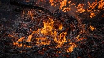 Feuerflamme, glühendes Feuer und Asche