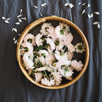 Gänseblümchen im Holzkreis