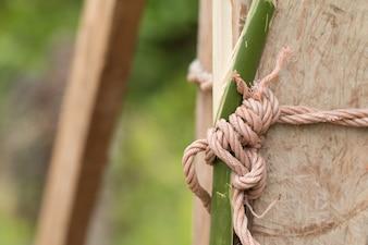 Geknotetes Seil Auf Holz