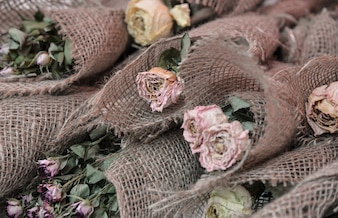 Getrocknete Blumen Hintergrund