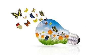 Glühbirne mit bunten Schmetterlingen