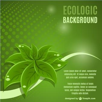 green leaf Hintergrund Vektor