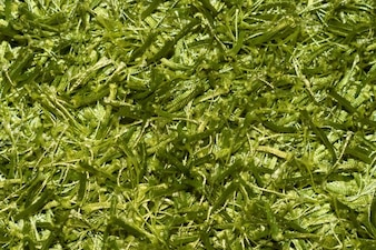 Grünen Fäden