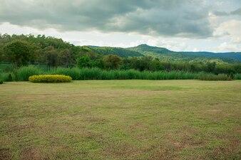 Grünes Feld Land für die Entwicklung.