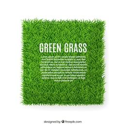 Grünes Gras banner