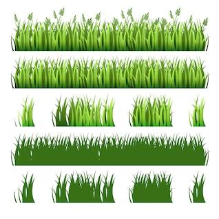 Grünes Gras-Pack