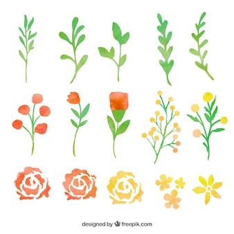 Hand gemalte Blätter und Blüten