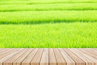 Holzboden auf Reisfeld