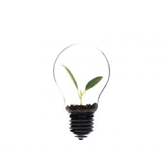 Innovation weiß transparent farbe erwärmung