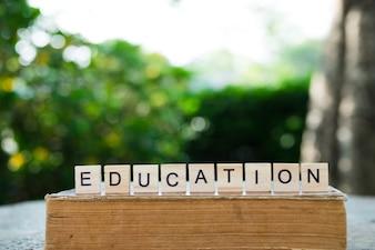 Konzept der Bildung