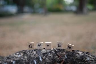 Konzept des grünen Lebens - hölzernes grünes Alphabet