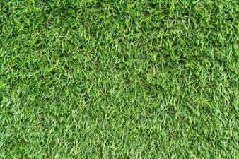 Künstliches Gras für den Hintergrund