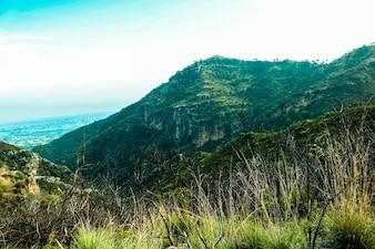 Ländliche weiße sonnige Landschaft Hügel grün