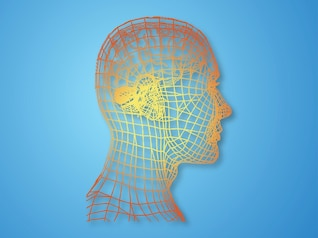modernen Psychologie Gesichtszüge Vektor