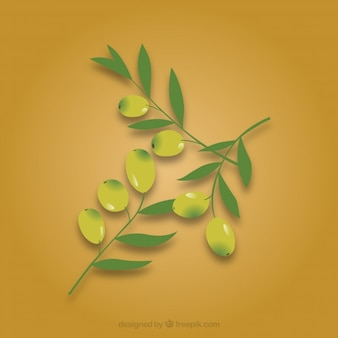 Oliven Zweig Blätter in Vektor-Pack