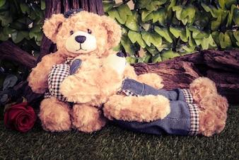 Paar Teddybären mit Rose im Garten