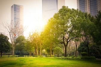 Park in lujiazui Finanzzentrum, Shanghai, China