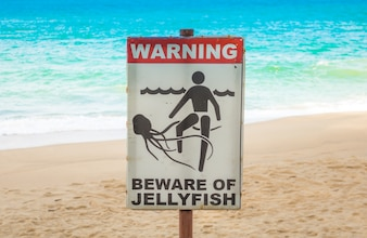 Quallen Warnschild am Strand.
