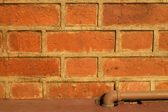 Red Brick Textur