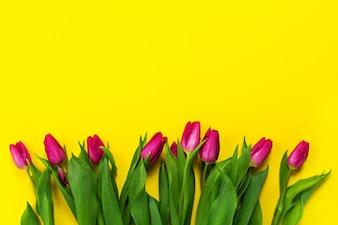 rosa tulpen vektoren fotos und psd dateien kostenloser download. Black Bedroom Furniture Sets. Home Design Ideas