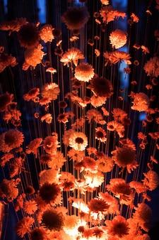 Rotlicht beleuchtet Chrysanthemen, die an den Fäden hängen