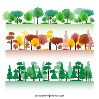 Saisonale Wald