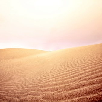 Sanddünen und Himmel auf der Wüste