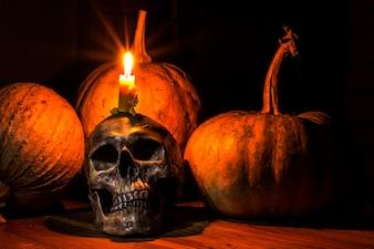 Schädel auf Haufen von trockenen Kürbis und Knochen Haufen mit Kerzenlicht, auf schwarzem Hintergrund / Stillleben Stil