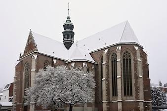 Schöne alte Tempelkirche. Basilika der Himmelfahrt. Jungfrau Maria. Brno Tschechische Republik. (Basilika klein) Winterlandschaft - frostige Bäume.