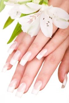 Schöne Maniküre und weiße Blume