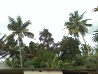 Schönheit von Kerala